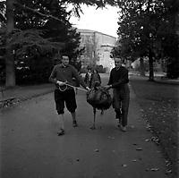 20 Novembre 1961, Vue d'une autruche qui est tenue en laisse par deux gardiens dans une allée du jardin des Plantes.