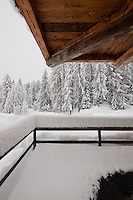 View from the snow-covered porch towards the pine forest