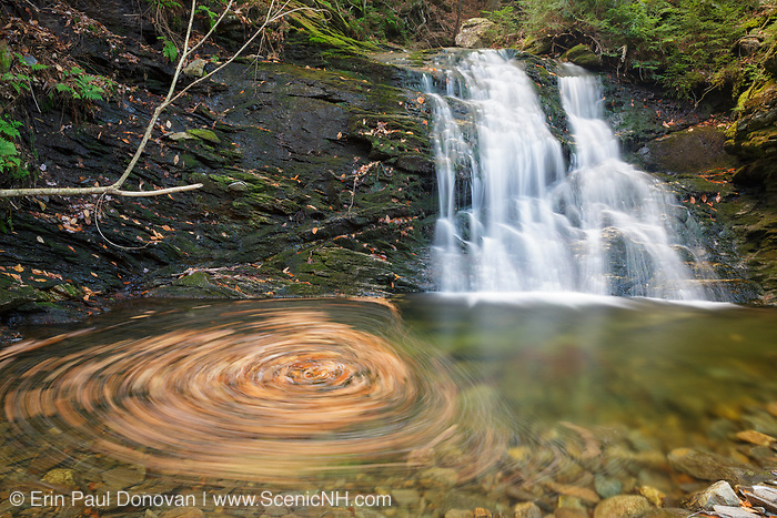 Blue Ravine Cascades, located along a tributary of the Wild Ammonoosuc River on the side of Mt. Blue in Kinsman Notch of the White Mountains, New Hampshire USA during the autumn months.