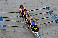 Crew: 257 Barnes Bridge Ladies Rowing Club B<br /> <br /> Women's Head of the River (WeHoRR) 2017<br /> <br /> To purchase this photo, or to see pricing information for Prints and Downloads, click the blue 'Add to Cart' button at the top-right of the page.