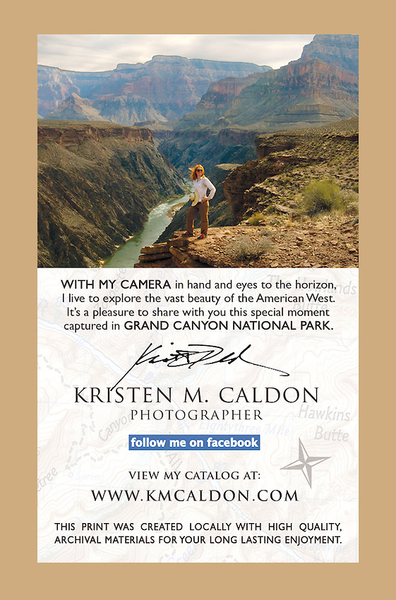 Tag placed on the back of each print in the <br />