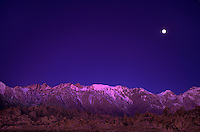 711700224 pre-dawn alpenglow lights up mount whitney and mount moran below a setting full moon with the spectacular granite formations of the bureau of land management protected alabama hills in the foreground in central california