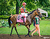 Peace Prize before The Robert G. Dick Memorial Stakes (gr 3) at Delaware Park on 7/9/16