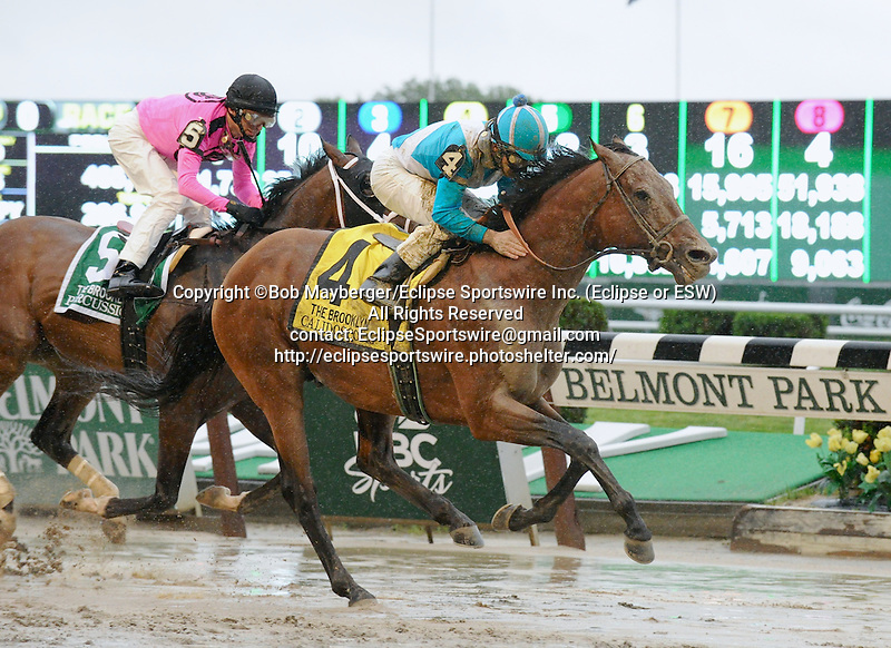 Calidoscopio (no. 4), ridden by Aaron Gryder and trained by Mike Puype, wins the 125th running of the grade 2 Brooklyn Handicap for  three year olds and upward on June 7, 2013 at Belmont Park in Elmont, New York.  (Bob Mayberger/Eclipse Sportswire)