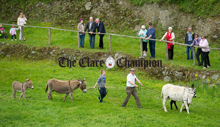 Matt O Meara leads out his donkey's during the North West Clare Show on the grounds of The Falls Hotel at Ennistymon. Photograph by John Kelly.