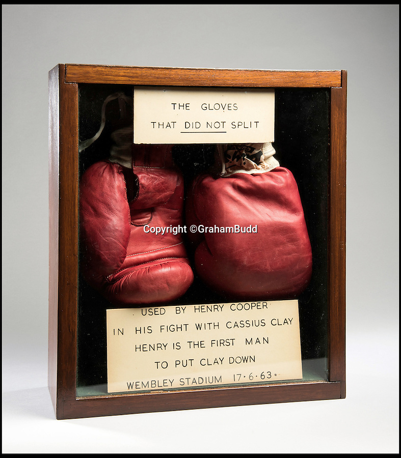 "BNPS.co.uk (01202 558833)<br /> Pic: GrahamBudd/BNPS<br /> <br /> For sale...'Enry's 'Ammer's that floored The Greatest.<br /> <br /> A British boxing legend's gloves - that Muhammad Ali claimed hit him so hard ""his ancestors in Africa felt it"" have emerged for auction for the knock out price of £50,000. <br /> <br /> Sir Henry Cooper wore them when he sent him crashing to the mat with his trademark 'Enry's 'Ammer' left hook in front of a baying Wembley crowd in 1963.<br /> <br /> Described at the time as 'the punch that shook the world' it was one of the few times the fighter was floored - although he controversially recovered."