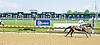 Princess Beau K winning at Delaware Park on 6/7/12