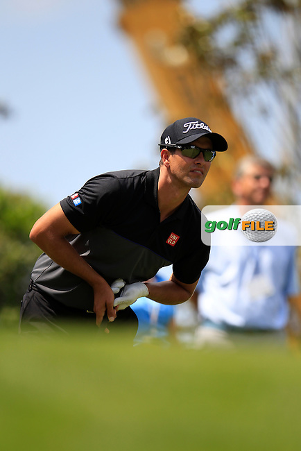 Adam Scott (AUS) during final round of the Wells Fargo Championship, Quail Hollow Country Club, Charlotte, North Carolina, USA. 08/05/2016.<br /> Picture: Golffile | Fran Caffrey<br /> <br /> <br /> All photo usage must carry mandatory copyright credit (&copy; Golffile | Fran Caffrey)
