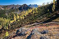 Grasshopper Pass, North Cascades National Park, Washington