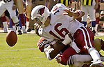 San Francisco 49ers defensive tackle Bryant Young (97) sacks Arizona Cardinals quarterback Jake Plummer (16) on Sunday, October 27, 2002, in San Francisco, California. The 49ers defeated the Cardinals 38-28.  .....