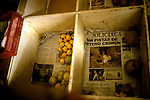 Fruit bins lined with old newspapers reporting on Mexican crime.