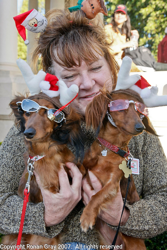 Tashia Slatton of Arizona sits with her dachshunds Laverne & Shorty at the Spreckels Organ Pavillion in Balboa Park, San Diego, California Sunday December 23rd 2007.  Slattton and her mother traveled from Arizona with the two dogs to take part in the San Diego Dachshund Clubs gathering that included a parade across the stage during the annual Christmas Sing-Along.