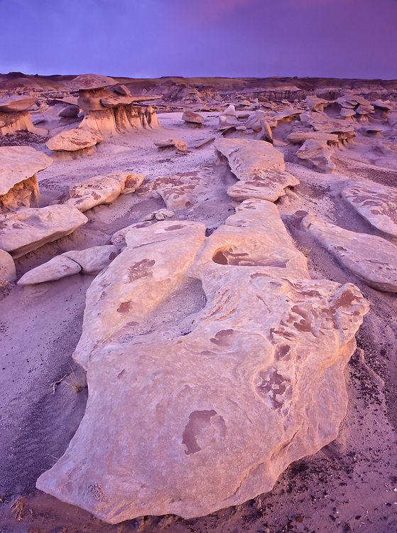 "Eroded sandstone rocks made of Fruitland Formation sit in ""Mushroom City"" in Bisti Badlands"