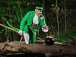 Leprechaun with a pot of gold in a forest