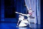 English National Ballet Le Spectre de la Rose