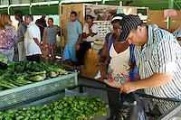 SANTO DOMINGO.- El Instituto de Estabilizaci&oacute;n de Precios<br /> (INESPRE), realizar&aacute; su tradicional programa<br /> de Ferias Navide&ntilde;as a trav&eacute;s de las cuales ofertar&aacute; a la poblaci&oacute;n<br /> productos comestibles a bajos precios.