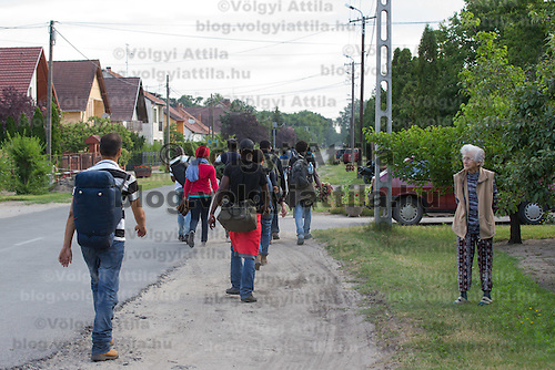 Illegal migrants from west Africa walk on a road past by a local woman in border town Asotthalom (about 190 km South-East of capital city Budapest), Hungary on July 16, 2015. ATTILA VOLGYI
