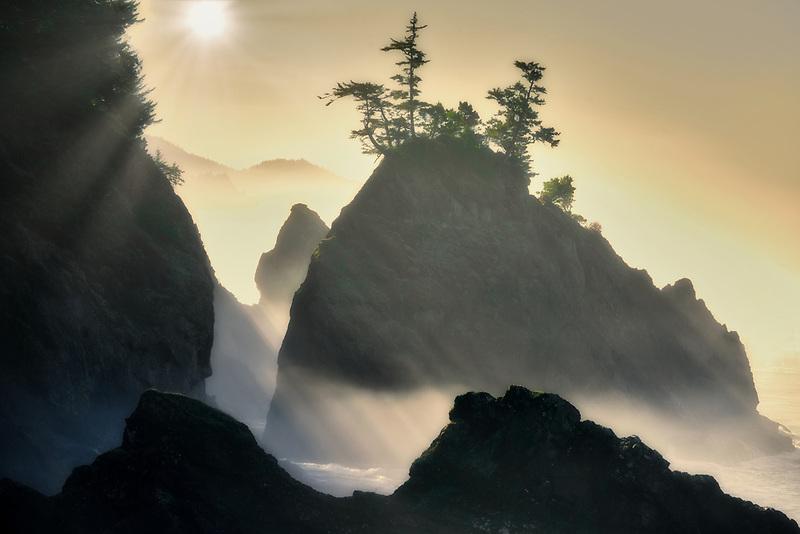 foggy coastline at Samuel H. Boardman State Park, Oregon