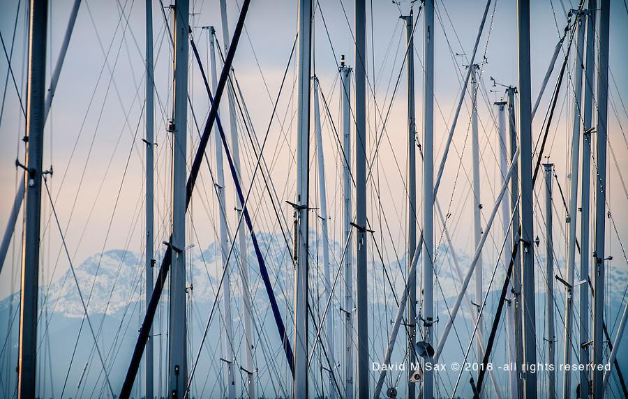 1.14.17 - Masts & The Olympics...