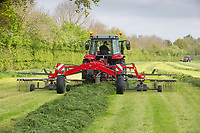Rowing grass silage <br /> ©Tim Scrivener Photographer 07850 303986<br />      ....Covering Agriculture In The UK....