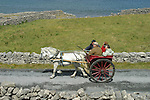 Carriole à cheval sur les petites routes de l'ïle d'Inishmore.  Iles d'Aran . Irlande.Horse-cart on the small roads of Insihmore Island. Aran Island. Eire. Irlande