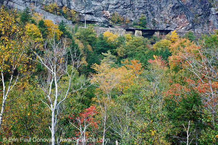 Crawford Notch State Park - Maine Central Railroad in the White Mountains, New Hampshire USA. Chartered in 1867 as the Portland & Ogdensburg Railroad then leased to the Maine Central Railroad in 1888 and later abandoned in 1983. Since 1995 the Conway Scenic Railroad, which provides passenger excursion trains has been using the track.<br />