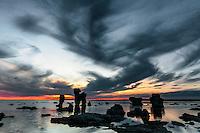 Fårö, l'isola svedese del regista Ingmar Bergman.