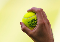 England, London, 28.06.2014. Tennis, Wimbledon, AELTC, Semifinal match between Eugenie Bouchard and Simone Halep, Pictured: Ballboy ready to throw ball<br /> Photo: Tennisimages/Henk Koster
