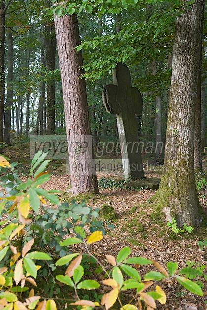 Europe/France/Bretagne/35/Ille et Vilaine/Paimpont: Forêt de Paimpont, mythique Brocéliandre -Croix de Calvaire en pierre