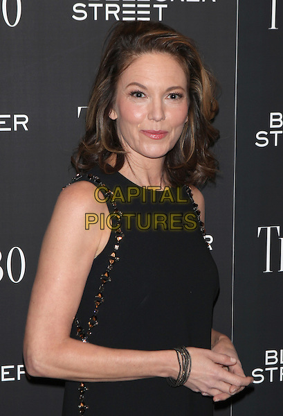 NEW YORK, NY - NOVEMBER 3: Diane Lane at the special Bleecker Street screening of Trumbo at the MoMA TiTUS 2 in New York City  on November 3, 2015. <br /> CAP/MPI99<br /> &copy;MPI99/Capital Pictures