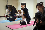 NEW YORK  -  MARCH 04, 2009:  Katie Bell (C) does a pose with her dog Riley during a dog yoga class at the Bideawee Learning Center on March 4, 2009 in New York City.  (PHOTOGRAPH BY MICHAEL NAGLE)