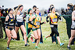 _E1_8258<br /> <br /> 16X-CTY Nationals<br /> <br /> Men's Team finished 7th<br /> Women's team finished 10th<br /> <br /> LaVern Gibson Cross Country Course<br /> Terre Houte, IN<br /> <br /> November 19, 2016<br /> <br /> Photography by: Nathaniel Ray Edwards/BYU Photo<br /> <br /> &copy; BYU PHOTO 2016<br /> All Rights Reserved<br /> photo@byu.edu  (801)422-7322<br /> <br /> 8258