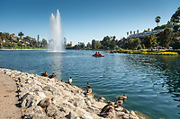 Echo Park, near downtown Los Angeles, on Aug. 22, 2017.<br />