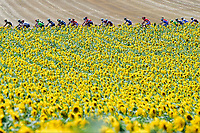 TDF Stage 14