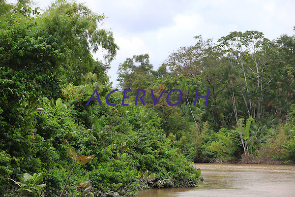 Percursso em dire&ccedil;&atilde;o ao arquip&eacute;lago do Bailique, saindo por estrada de terra de Macap&aacute; por cerca de 2 horas embarcando em voadeira motor quarenta por 3 horas.<br /> Arquip&eacute;lago do Bailique, Amap&aacute;, Brasil.<br /> &copy;Paulo Santos<br /> 15/09/2016