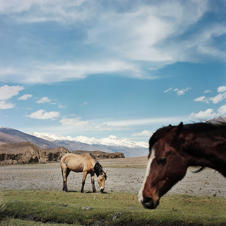 Horses eat in one of the few grass pastures in the valley of the Wakhan Corridor.  The harsh conditions and rocky terrain make it difficult to raise livestock in the valley, forcing herders into the mountains.