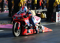 Oct 29, 2016; Las Vegas, NV, USA; NHRA pro stock motorcycle rider Hector Arana Sr during qualifying for the Toyota Nationals at The Strip at Las Vegas Motor Speedway. Mandatory Credit: Mark J. Rebilas-USA TODAY Sports