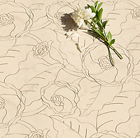 Chloe, a stone waterjet mosaic, show in honed Bianco Antico, is part of the Bright Young Things™ collection by New Ravenna.