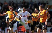 Ashley Williams sorrounded by a pack of wolves<br />