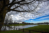 Henley Lake in Masterton, New Zealand on Wednesday, 19 July 2017. Photo: Dave Lintott / lintottphoto.co.nz