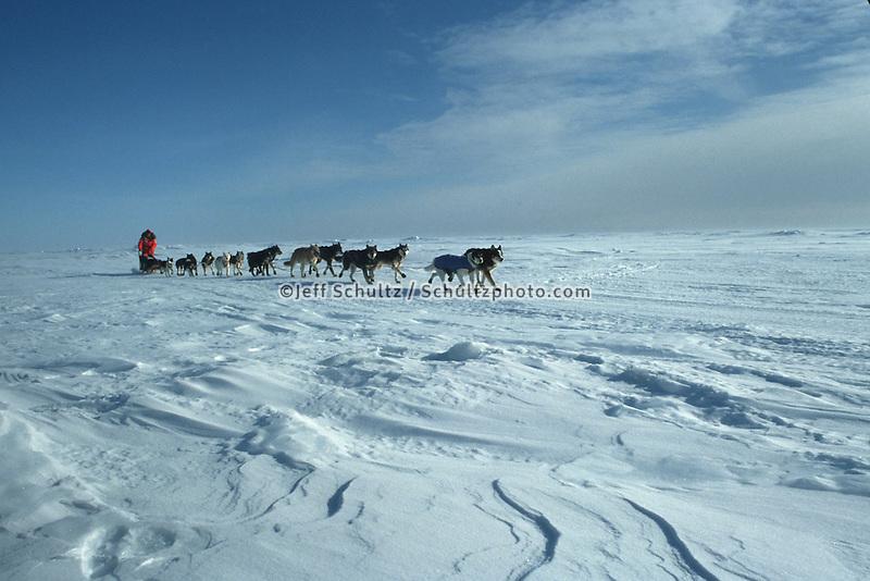 Susan Butcher Norton Sound Near Elim Checkpoint Iditarod 1991