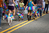 The Carolina Care Bullies make their way down Main Street during the 27th annual N.C. PRIDE parade in Durham, NC, Saturday, September 24, 2011.
