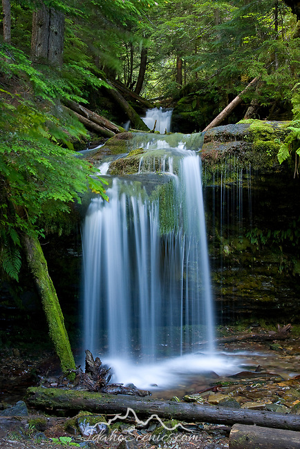 Shadow Falls on Yellow Dog CReek in the Coeur d' Alene Ranger District, a tributary of the Coeur D Alene river