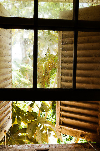 Barbados - Plantation house, Wakefield Hall, architecture, colonial - sash window open onto the invading vegetation and shutters