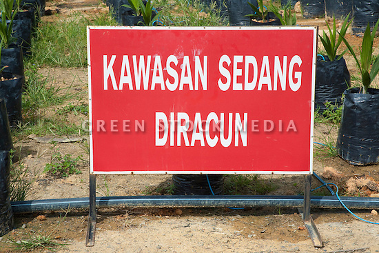 A Malay sign spelling 'Kawasan Sedang Diracun' is warning that chemicals are in use in the area. The Sindora Palm Oil Plantation, owned by Kulim, is green certified by the Roundtable on Sustainable Palm Oil (RSPO) for its environmental, economic, and socially sustainable practices. Johor Bahru, Malaysia