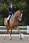 Class 10. Advanced Medium 98. British Dressage. Brook Farm training centre. Essex. UK. 11/11/2017. ~ MANDATORY CREDIT Garry Bowden/Sport in Pictures - NO UNAUTHORISED USE - +44 7837 394578