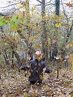 Junge spielt im Herbst im Wald mit Laub, wirft Blätter in die Luft