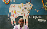Man in front of a painting showing multiple gods in a holy cow.Cow are holy in India, believed to be a cosmos of devine spirits. Also the supreme god  Shiva is riding on a cow.