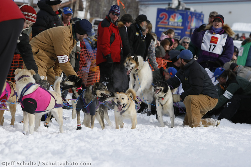 Jessie Royer dogs run down the chute on Sunday during the restart day of Iditarod 2009 in Willow , Alaska
