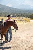 USA, Nevada, Wells, cowboy and wrangler Clay Nannini prepares for a Horse-Drawn Wagon Ride at Mustang Monument, A sustainable luxury eco friendly resort and preserve for wild horses, Saving America's Mustangs Foundation
